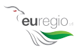 Euregio Media Intelligence